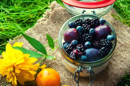 Fresh fruit sealed in a jar. Grass background.