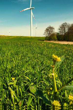 Wind turbine in rape field Stock Photo