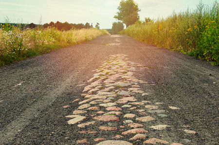 bumpy: The image of forest road gravel.