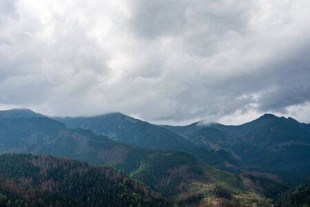 Mountains full of green forests. Lovely place. Banque d'images - 132240735