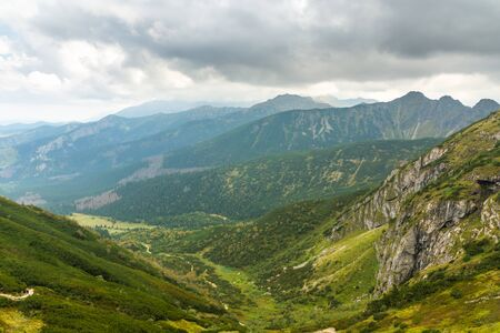 Forests in the mountains Polish Tatras. Beautiful day. Stok Fotoğraf