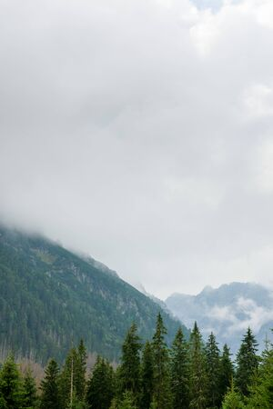 Montañas Tatra cubiertas de nubes y niebla espesa