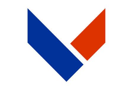 letter v vector logo icon vector concept flat design