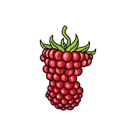 Incomplete Grapes Fruit Vectors  Design Stock Illustratie