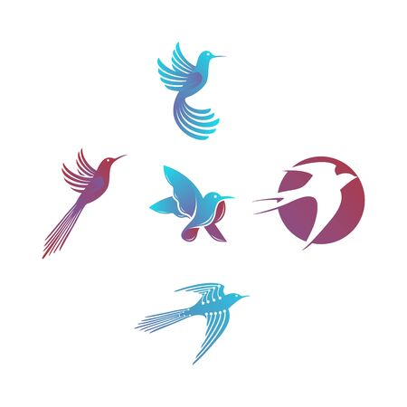Bird design templates vector Set
