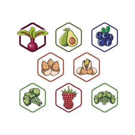 Fresh fruits and vegetables design templates vectors set