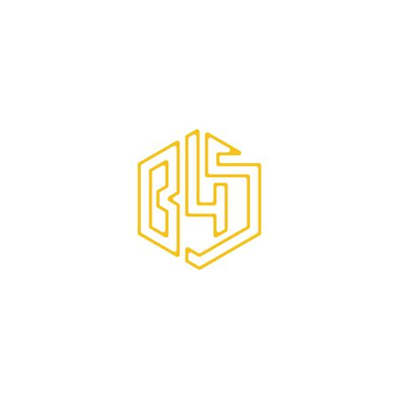 Initial letter B45 logo design vector unique