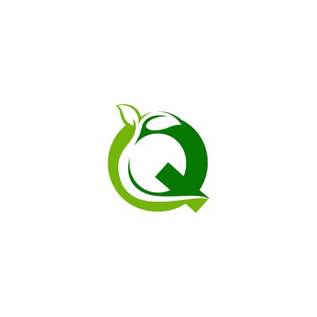 Combination of green leaf and initial letters Q logo design vectors