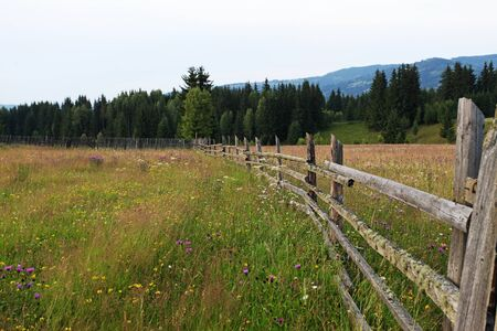 countryside landscape: Countryside fence nature landscape