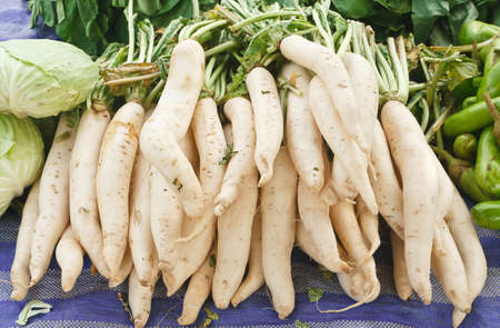 radish solds in the market