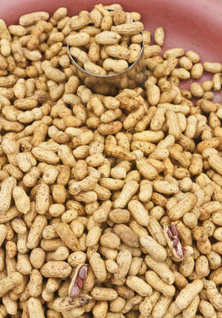 protein crops: groundnut boils salt fully sells in the market Stock Photo
