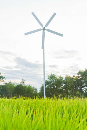 Rice field with wind turbines in thailand Stock Photo - 15978160