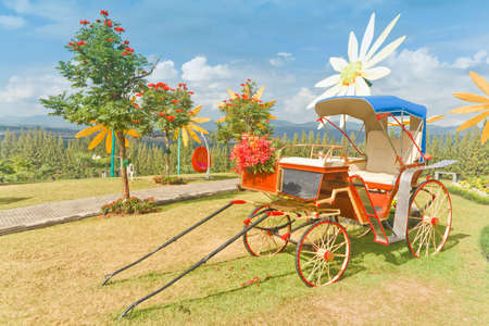 carriage   see free show, at Mae Moh Lignite Mine  Lampang Thailand  photo