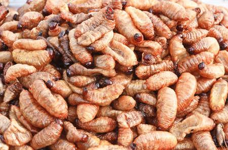 grub: grub larvae fried, ready to eat