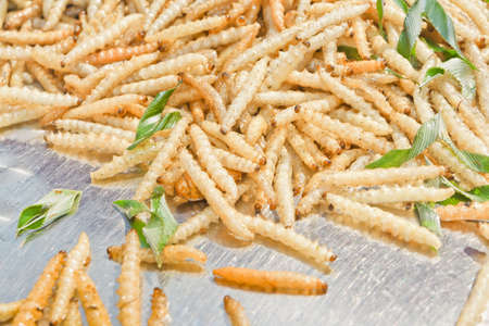 mealworm: Fried worms, it Stock Photo