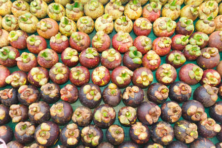 mangosteen, arranged in rows for decorate