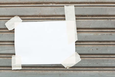 flap: White paper label, on the flap