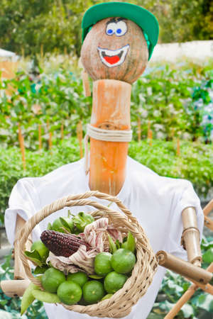 Cute Scarecrow, holding a basket of vegetables and fruits. photo