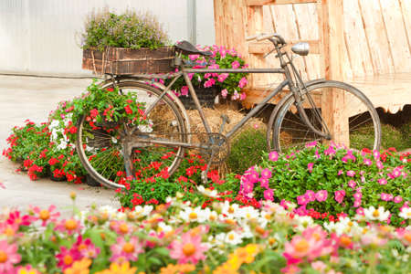 Old bike and decorated with flowers, in a beautiful garden. Stock Photo
