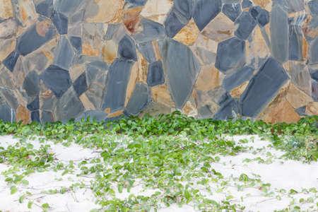 Old brick walls, beachfront Reklamní fotografie