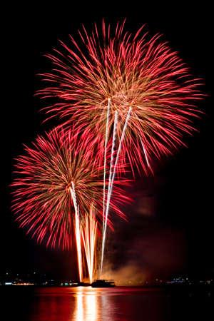 fireworks, on a black background.