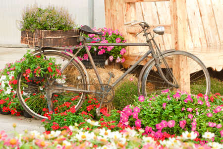 Old bike and decorated with flowers, in a beautiful garden. Reklamní fotografie