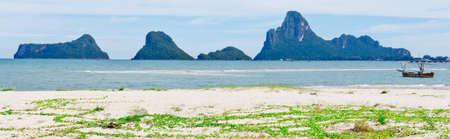 Goat's Foot Creeper or Beach Morning Glory, (Ipomoea pes-caprae) on Prachuap beach Reklamní fotografie
