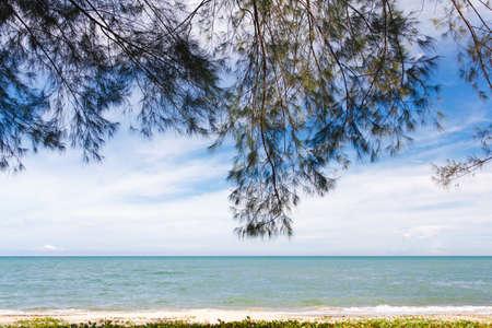 Prachuap beach and pine.