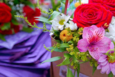 Bouquet of fresh red, white , purple roses . bouquet of multicolored roses . Red flower picture close up in the bouquet.