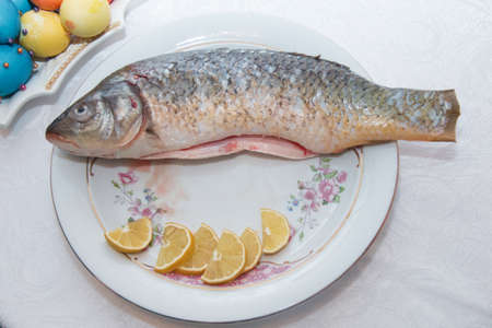 inside the fish plate .A bass fish with eyes doll inside a flower plate hidden on white background. Minimal quirky color still life photography.