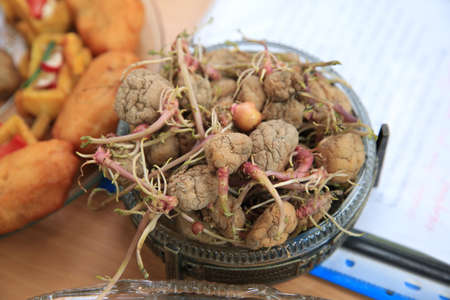 In a jar along with the potato root. Potato seeds . Potato seeds in the form of potatoes are stacked