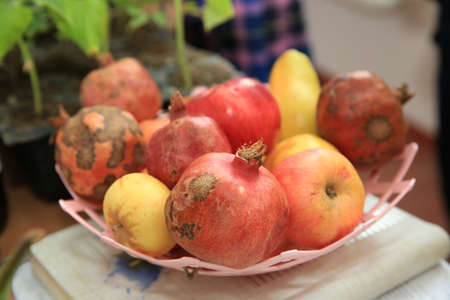 Pomegranate and apple in a plastic bowl.Red apples with dry leaves and red pomegranates piled in plastic plates on display for sale on a local fair. Autumn and Thanksgiving scene. 스톡 콘텐츠
