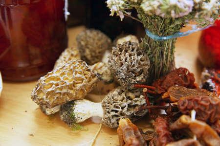 Lamb belly mushroom in Azerbaijan Natural mushroom. Morchella esculenta. Mushroom in the forest.