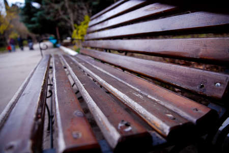 Empty Park wooden bench Closeup view. Wood exterior material. Wood material details. Blank Old bench in a shady area of the garden or the park,outdoor. Shaded wood park bench surrounded by greenery 写真素材