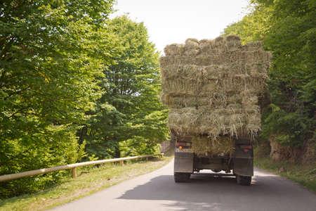 Der LKW trägt Heurollen vor dem Hintergrund von Wald und Bergen. Nach der Ernte. Frühherbst. Der LKW trägt Heu. Heutransporter an der Überlandstraße.