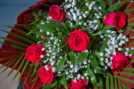 Bouquet of fresh red roses . bouquet of red roses . Red flower picture close up in the bouquet. The flowers petal