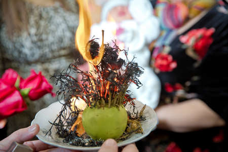 Peganum harmala. Incense of herb smokes for good luck. Magic plant uzerlik . Burning prevents bad looking.