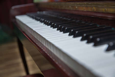 piano presses . Piano keys close up. Musical instrument . Select focus and soft focus.Close-up of a wooden piano . Defocused classic piano keyboard in white and brown colors . Stock Photo