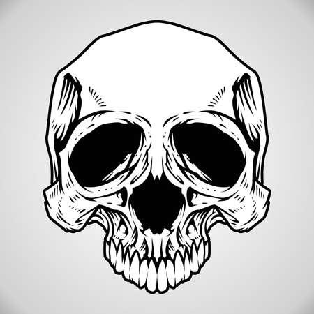 Vector Illustration : Skull Stock Vector - 18678118
