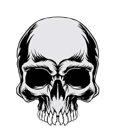 Vector Illustration : Skull