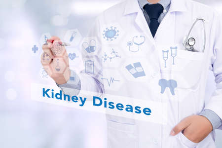 nephron: Medicine doctor hand working with modern computer interface as medical network Kidney Disease concept
