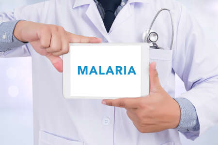 malaria: MALARIA  CONCEPT Medical Doctor holding  digital tablet
