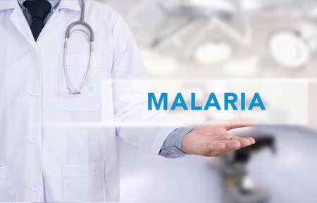 malaria: MALARIA  CONCEPT Medical Medicine doctor hand working Stock Photo
