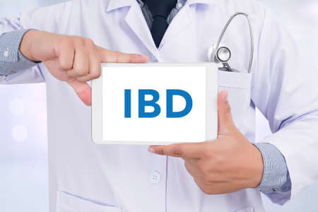 bowel: IBD - Inflammatory Bowel Disease. Medical Concept Doctor holding  digital tablet