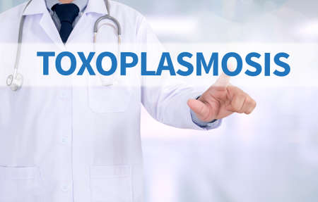 convulsions: TOXOPLASMOSIS Medicine doctor working with computer interface as medical