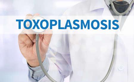convulsions: TOXOPLASMOSIS Medicine doctor hand working on virtual screen