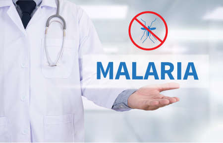 malaria: MALARIA Medicine doctor hand working