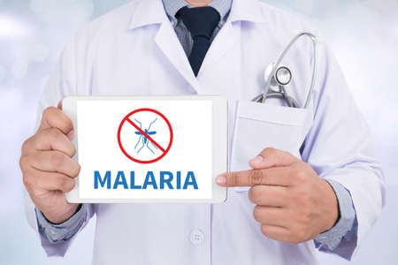 malaria: MALARIA Doctor holding  digital tablet Stock Photo