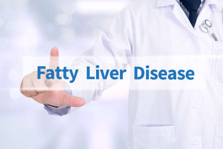 fatty liver: Fatty  Liver  Disease Medicine doctor working with computer interface as medical