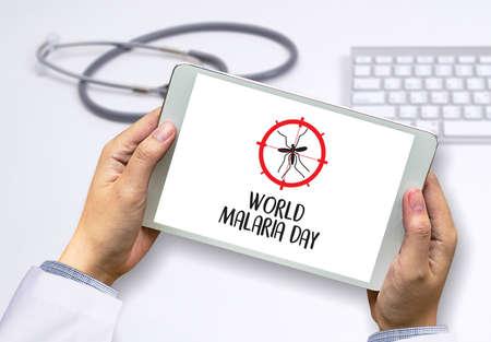 MALARIA mosquito sucking blood World Malaria Day Zika virus alert Stock Photo